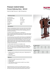 Model DM 401 - Double Seat Straight Way Valve Brochure
