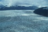 As Andean glacier retreats, tiny life forms swiftly move in, CU study shows