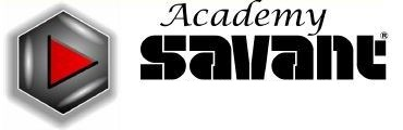 Academy Savant- SAVANT Audiovisuals, Inc.