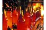 Industrial air pollution control for the food industry - Food and Beverage - Food