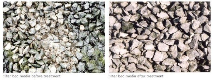 Filter bed remediation - Case Study
