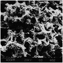 Fig 1. LEVAPOR, porous, adsorbing carrier material (REM photo)