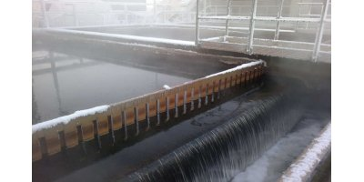 ENVISTONE - N-Reduction from Cold Wastewater