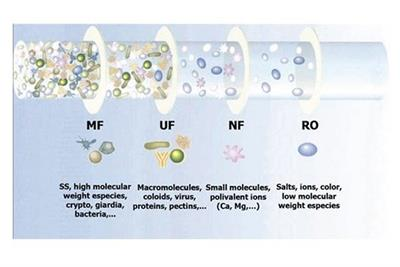 UF Purification versus Microfiltration, Which Process To Choose For Your Application?