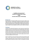 Condition Assessment of Metallic Drinking Water Pipes using Acoustic Resonance Technology - Brochure