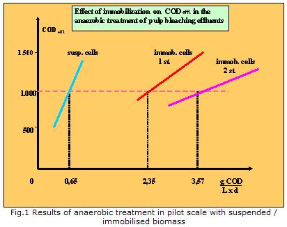 Anaerobic-aerobic treatment of toxic pulp effluents with biomass, immobilised on LEVAPOR carrier