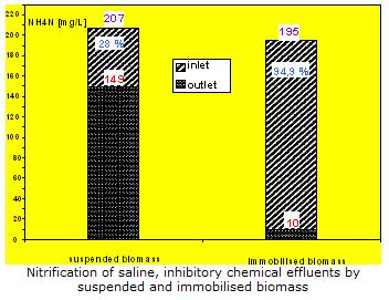 Nitrification of saline, inhibitory chemical effluents using LEVAPOR-carrier