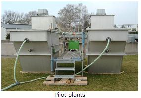 Nitrification of municipal effluents in fluidised bed reactors using immobilised microorganisms