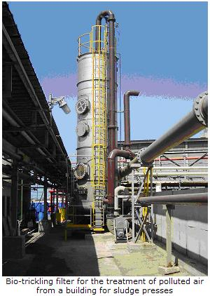 Biotreatment of polluted air from a sludge treatment building in a BTF