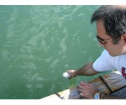 Advanced Rio lab warns of Olympic water quality danger