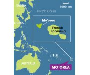 Pacific island ecosystem to be captured in online model