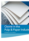 Ozone in the Pulp & Paper Industry Brochure