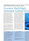 Model CS-HAC - Coconut Shell-High Activated Carbon Brochure