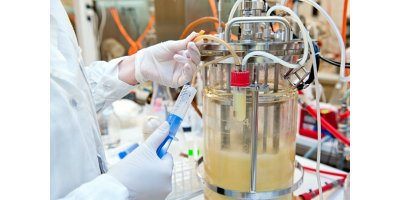 Analytical instruments for bioreactor and fermentor - Monitoring and Testing - Laboratory Equipment