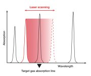 Laser Gas Detection TDLS Technology