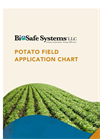 Potato Field Brochure