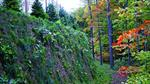 Presto GEOWEB - Naturally-Vegetated, Green Retaining Wall Systems