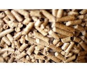 Big Leap in Biomass Use for Heating in Spain