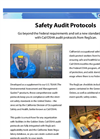 Safety Audit Protocols Brochure