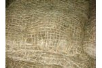 CoirGreen - Coir Pallet Coir Pillows