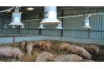 EB - Pig Feeding Systems