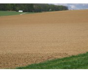 EPUK launches website outlining the vital Importance of Healthy Soil to mark World Soil Day 2011