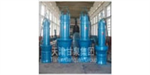 Submeisible Axial Flow Pump
