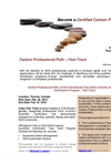 Carbon Professional Path - Fast Track Flyer