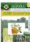 Setting of Jojoba Farming & oil Project