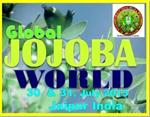JojobaWorld 2013 - 2 Day Jojoba State of Art International Workshop