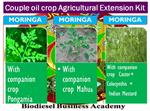 Biodiesel Plan - Model 2016 - Moringa++ Couple Biodiesel Crop Extension Kit