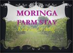 Moringa India - Moringa Farm Stay