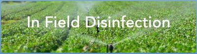 In Field Disinfection