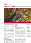 Protected Species Survey, Advice & Licencing Specification