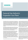 Natural Gas Industry Expander Gas Plant - Application Note