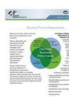 Business Process Improvement Services Brochure