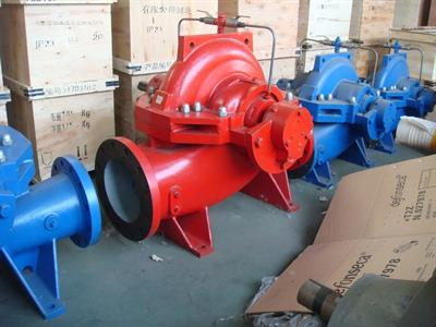 DeTech - Model WS Series - Split Case Pump