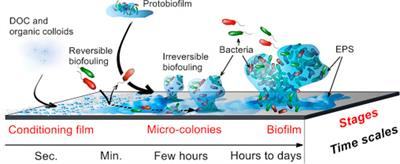 SMALL MOLECULE CONTROL OF BIOFOULING CONFERENCE-3