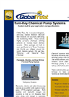 Turn Key Chemical Pump System
