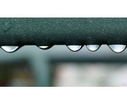 Taking Advantage of the Wet Summer – From Food Safety To Rainwater Harvesting