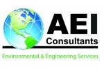 Site investigation and Remediation Services