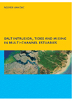 Salt Intrusion, Tides and Mixing in Multi-Channel Estuaries: PhD: UNESCO-IHE Institute, Delft