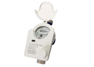 SUNTRONT - Wireless Remote Meter-Reading Water Meter