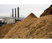 Biomass power generation will reach $11.5 billion in annual revenue by 2020