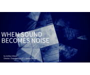 When Sound Becomes Noise