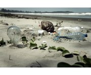 New ASTM International standard  Biodegradability of Plastics in the Sea