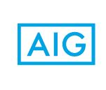 AIG Environmental / American International Group, Inc.