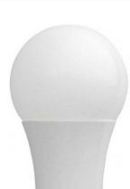 Model A19 - LED Light Bulbs