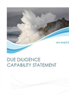 Due Diligence Services Brochure