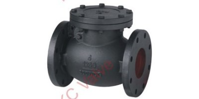 Model MSS SP-71 Calss 125 - Cast Iron Swing Check Valve